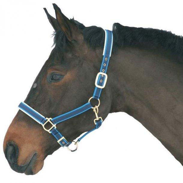 Hestegrime - Exclusiv
